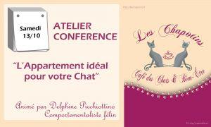 """Atelier Conférence """"L'appartement idéal pour votre chat"""" Samedi 13 octobre"""